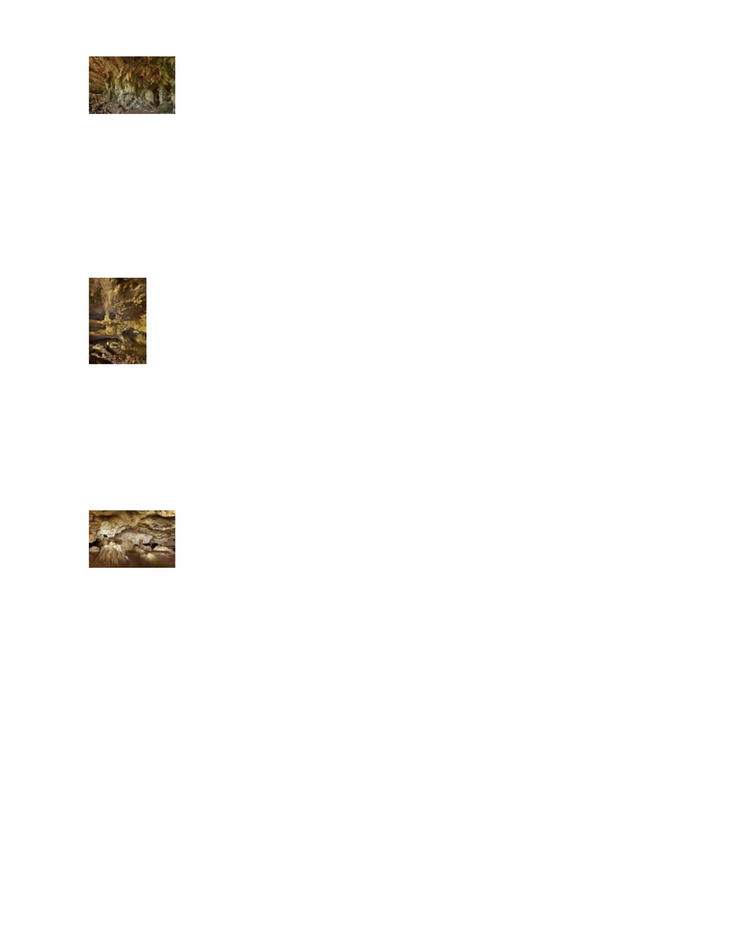 SSL_BTM_Exhibit_.pdf_21